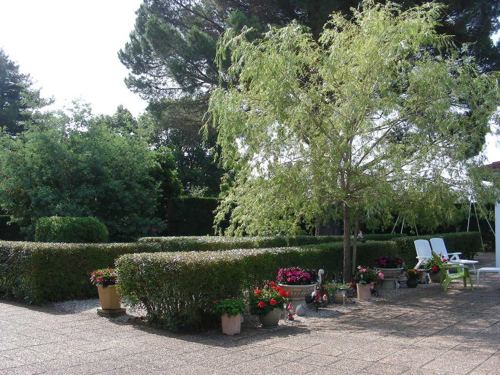 Location maison landes soustons Roth jardin